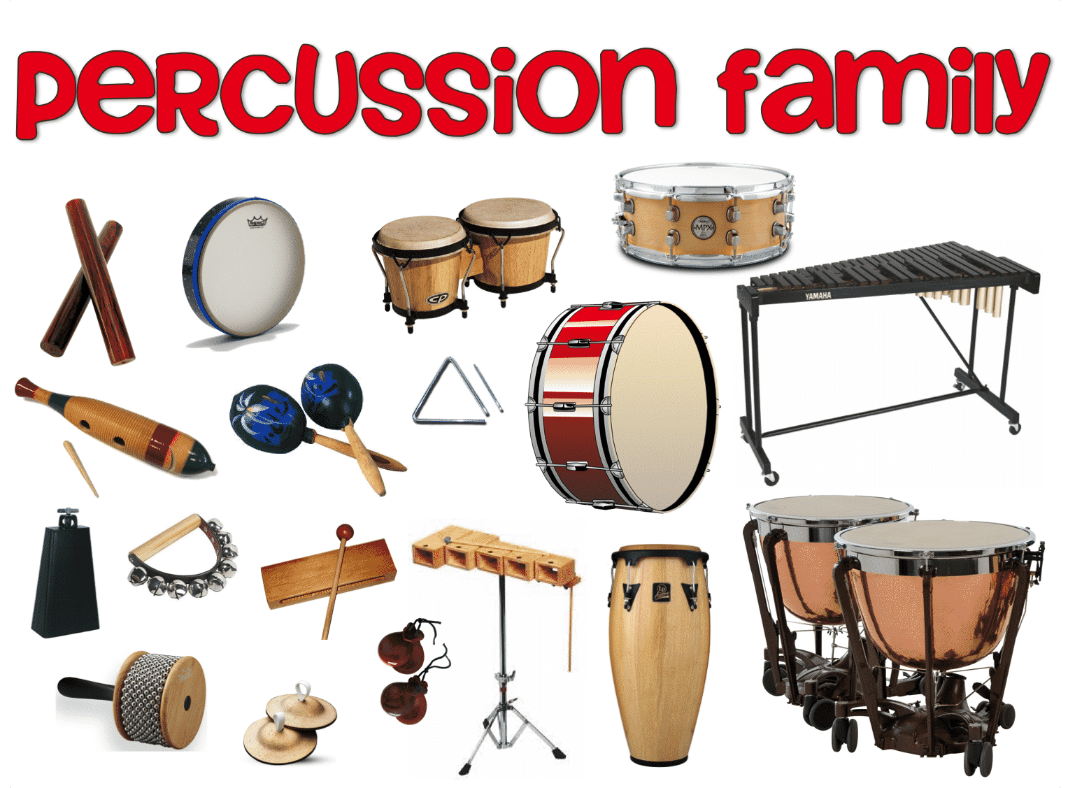 guide to auxiliary percussion common and uncommon